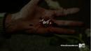 Teen Wolf Season 5 Episode 12 Damnatio Memoriae No More Black Blood.png