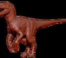 Raptor (Jurassic Park)