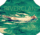 RiverClan (Techniwolf & Flowercrownprincess8)