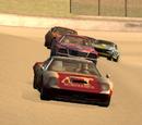 Circuit Race - Hunts Point