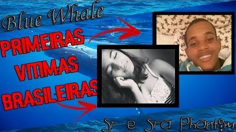 BLUE WHALE BALEIA AZUL *PRIMEIRAS VITIMAS BRASILEIRAS*