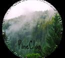 PineClan (Angelluna)
