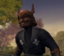Black Ninja Leader