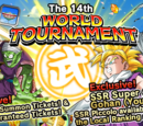 World Tournament n°14