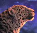 Felines Of Corrupted Stars