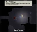 Рыцарь пустоты