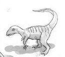 Unidentified ornithopod