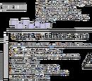 MidnaChan86/Die erste Wiki-News Ausgabe