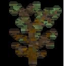 Arbusto grande seco.png