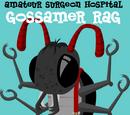 Gossamer Rag