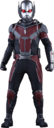 Hot-Toys Ant-Man 2.png