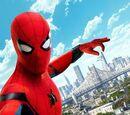Peter Parker (film)