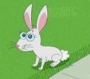 Dennis the Rabbit
