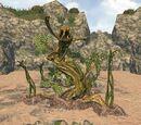 Viper Root