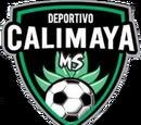 Deportivo Calimaya MS
