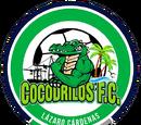 Cocodrilos FC Lázaro Cárdenas