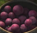 Owoc Vanaheim