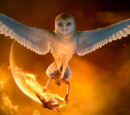 Legend of the Guardians: The Owls of Ga'Hoole Characters