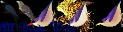 All Birds Wiki