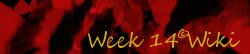 Week 14 Wiki