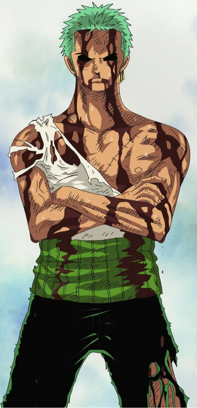 Roronoa Zoro/Abilities and Powers - The One Piece Wiki ...